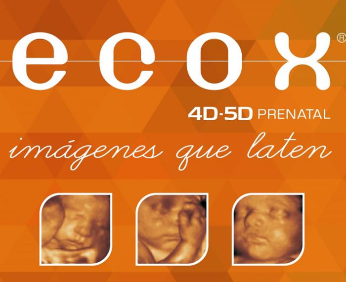 Eco4D – 5D