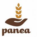 PANEA